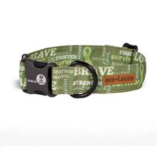 Eco-Lucks Courage Collection Dog Collar - Survivor Sage