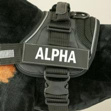 EzyDog Convert Harness Custom Side Patches - Alpha