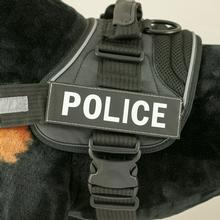 EzyDog Custom Side Patches for Convert Harness - Police