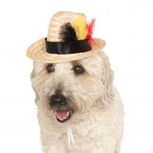 Fedora Dog Hat with Feathers