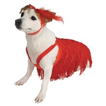 Flapper Dog Dress Costume