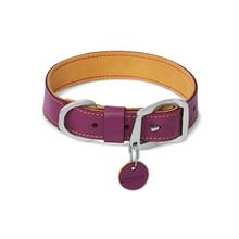 Frisco Dog Collar by RuffWear - Wild Plum Purple
