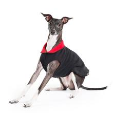 Gold Paws Reversible Double Fleece Jacket - Red/Black