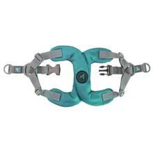 Gooby Escape Free Step-In Dog Harness - Turquoise