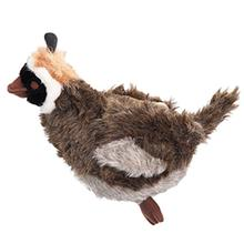 Grriggles Squawk Flock - Quail