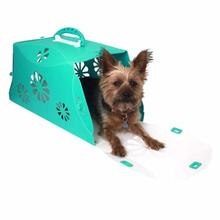Guardian Gear Blossom Color-Me Pet Crate - Sea Glass