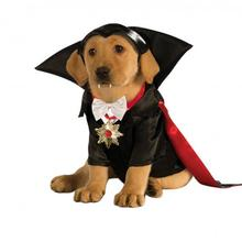 Halloween Dracula Dog Costume