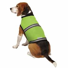 Insect Shield Protective Dog Safety Vest - Fern