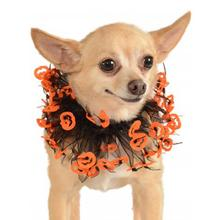 Jack-O-Lantern Fancy Dog Collar Scrunchie