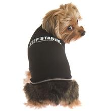 'Keep Staring...' Dog T-Shirt