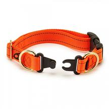 Keepsafe Break-Away Dog Collar - Orange