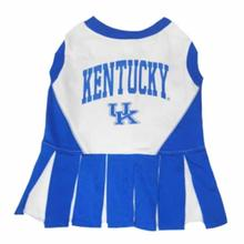 Kentucky Cheerleader Dog Dress
