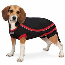 KONG Anxiety-Reducing Dog Shirt - Black
