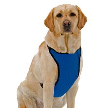 Kumfy Tailz Cools & Warms Mesh Dog Harness - Blue