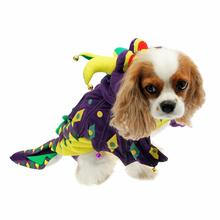 Mardi Paws Dragon Dog Costume
