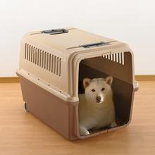 Mobile Pet Carrier by Richell