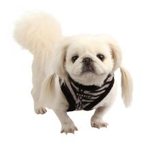 Modern Zebra Dog Harness by Puppia - Black