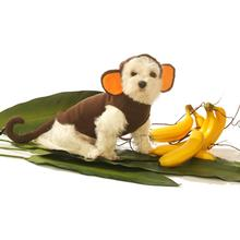 Monkey Dog Costume by Doggie Design