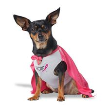 My BCRF Hero Dog Costume - Pink