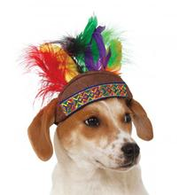 Native American Headdress Dog Hat
