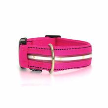 Neon Dog Collar with White LEDs - Hot Pink
