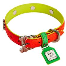 Neon Summer Madness Limited Dog Collar by Chrome Bones