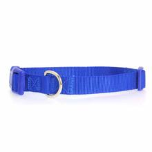 Nylon Dog Collar by Zack & Zoey - Nautical Blue