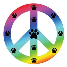 Peace Sign Magnet - Rainbow