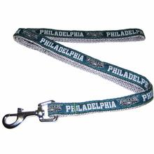 Philadelphia Eagles Officially Licensed Dog Leash - Silver Trim