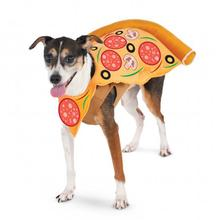 Pizza Slice Pet Costume