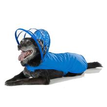 Push Pushi Rainbow Line Dog Raincoat - Royal Blue