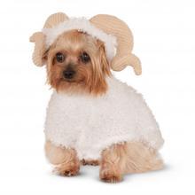 Ram Dog Hoodie Costume
