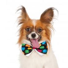 Rubie's Halloween Polka Dot Dog Bow Tie
