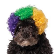 Rubie's Mardi Gras Afro Dog Wig