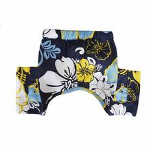 Sebastian Dog Swim Trunk - Blue
