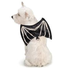 Skeleton Glow Wing Halloween Dog Harness Costume