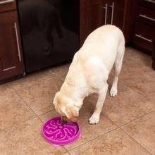 Fun Feeder Slow Feeder Dog Bowl - Flower Mulberry