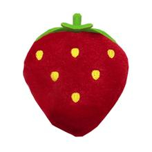 Strawberry Dog Toy - Red