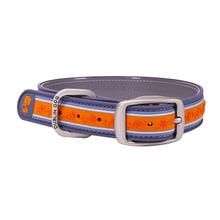 Tangerine Twist Wild Flower Dog Collar