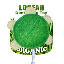 Turtle Loofah Dental Dog Toy