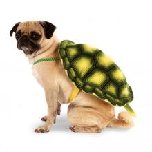 Turtle Shell Backpack Dog Costume