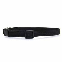 Twice as Nice Kitty Break-Away Cat Collar - Black