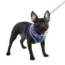 Vivien Dog Harness by Puppia - Blue