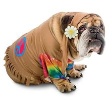 Zelda 60's Hippie Halloween Dog Costume
