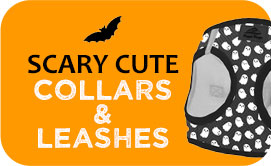 Halloween Collars