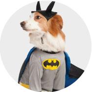 Halloween Superhero Costumes