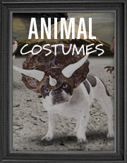 Halloween Animal Costumes