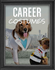 Halloween Career Costumes