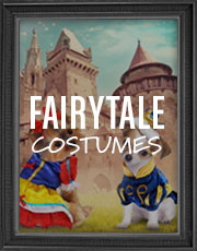 Halloween Fairytale Costumes