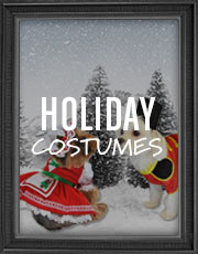 Halloween Holiday Costumes